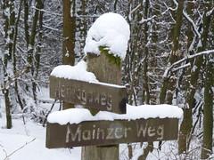 Mainzer Weg kreuzt Herzogsweg
