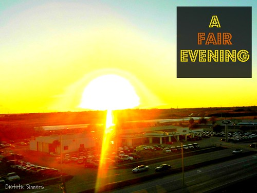County Fair 2013 (7)