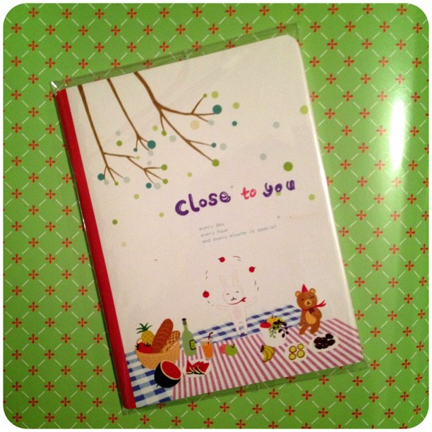 Each page is decorated in this #notebook #stationery #snailmail @yozocraft