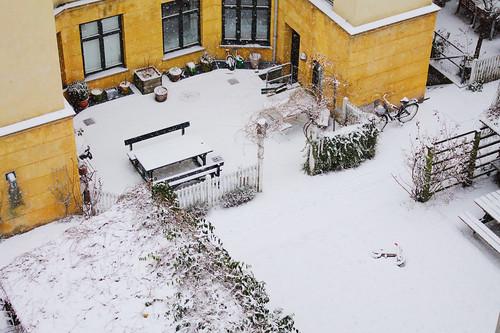 Good_Morning_Snow2