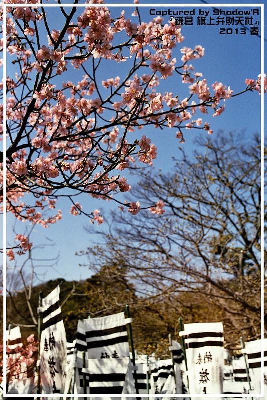2013初春時分在鎌倉的遊走拍