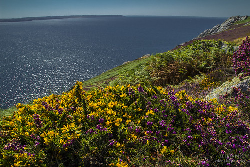 Colors of Brittany by Zdenek Papes