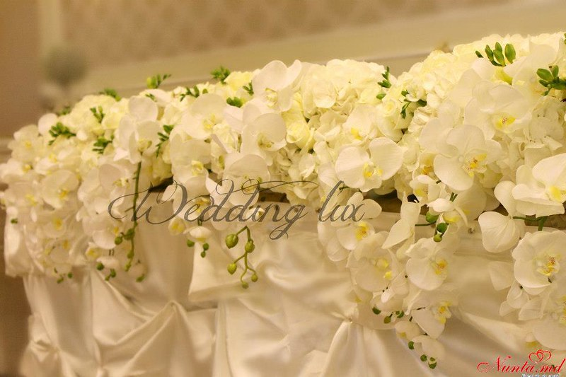 Организация торжеств oт Wedding Lux > Фото из галереи `Организация торжеств`