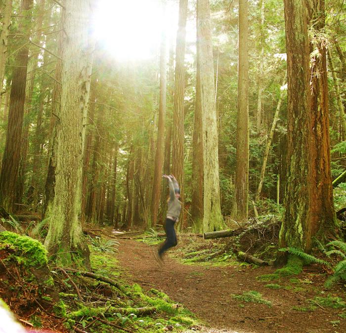 jump saratoga woods 2013