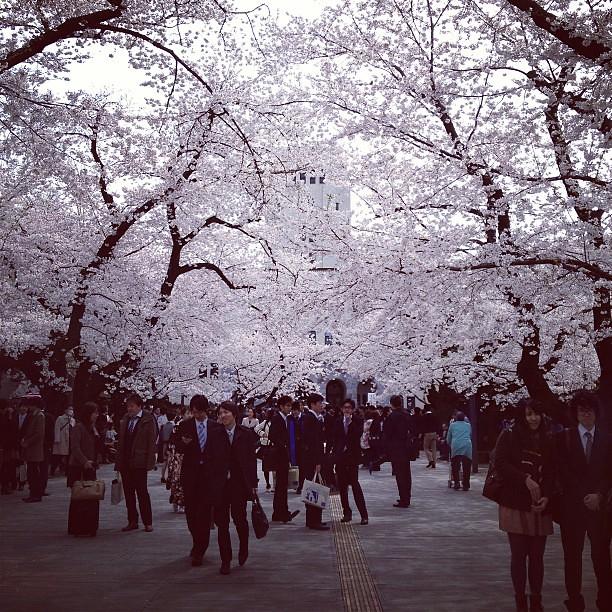 Photo:東京工業大学 By wiennat