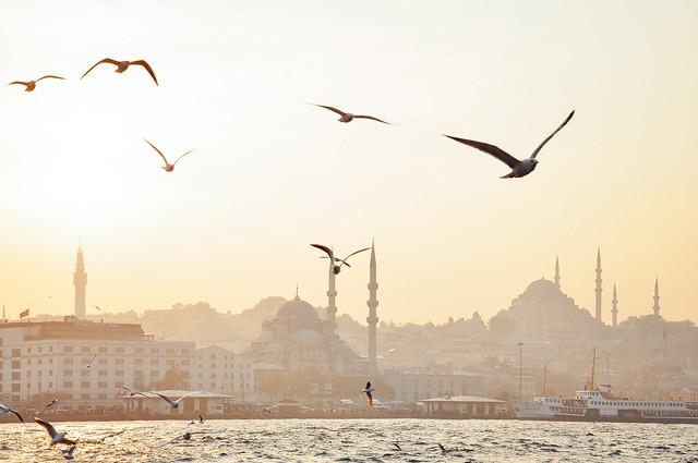 Bosphorus afternoons