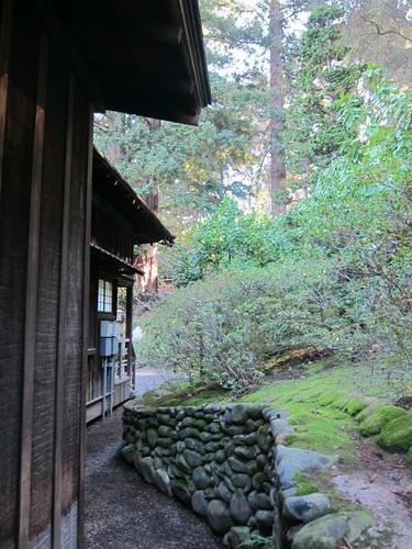 Hakone Japanese Gardens, Saratoga, CA IMG_2372