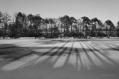 trees winter people blackandwhite bw lake 3 cold holland tree ice monochrome three bomen meer long shadows sneeuw thenetherlands persons breda ijs drie schaduwen monochroom kogelvanger pimvdh pimvandenheuvel boordbrabant