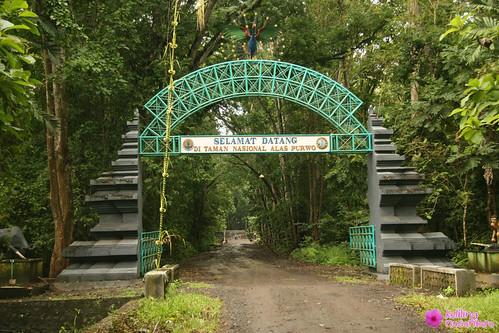 8405242458 38c5f8bac1 Alas Purwo National Park
