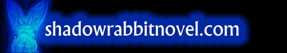 shadowrabbit.novel.com