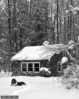 Snow Walter and the Cabin