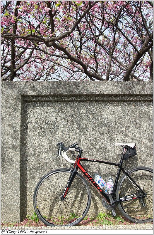 2013-02-03 平菁街-9