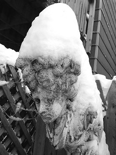 snow face 1 BW