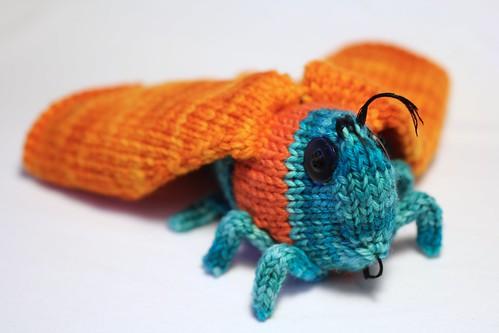 Knit Moth