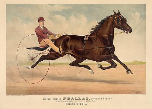 016-Imagen carreras caballos trotones-Library of Congress