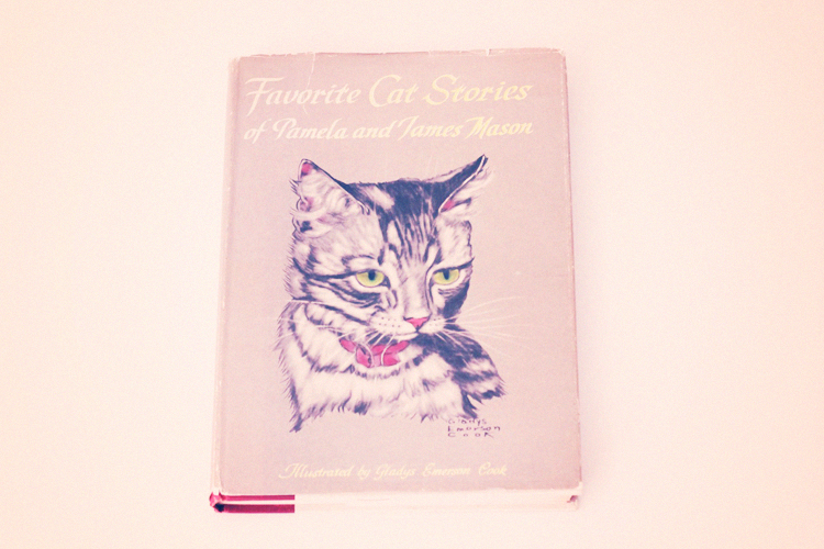 front cover cat stories
