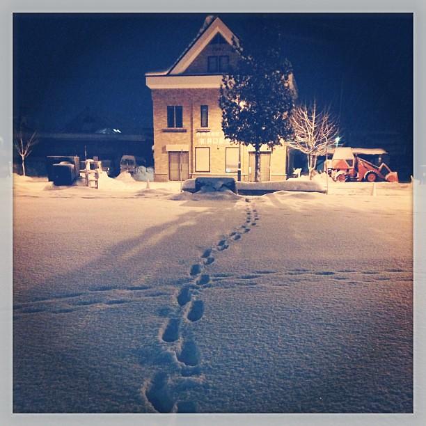 Photo:てな感じで、降り積もった雪のフィールドに敢えて足跡を付けるという、ガキみたいのことをしながらホテル戻り。戻ってカメラのメンテだけ先に。その後、人間。 By double-h_by_phone