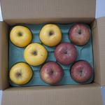 りんごやSUDAパッケージ
