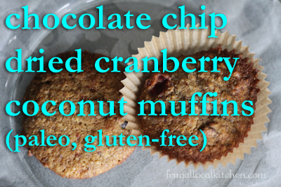Chocolate Chip Dried Cranberry Coconut Muffins (paleo, gluten-free)