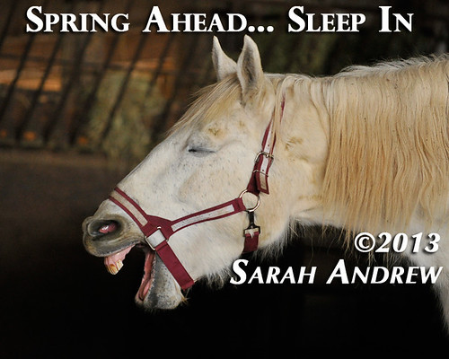 Spring Ahead... Sleep In!