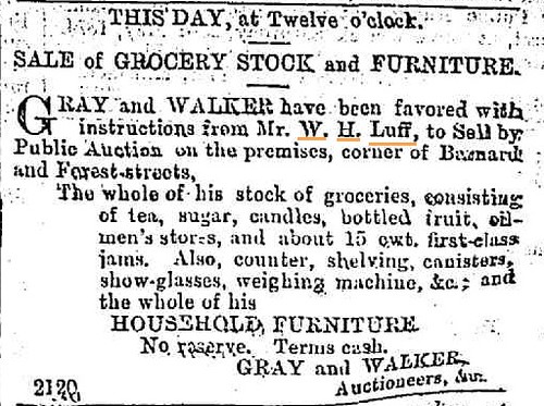 15 May 1874 Bendigo Advertiser W.H. Luff selling out
