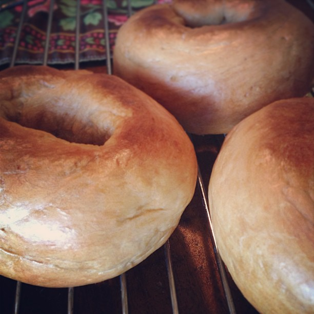 Homemade bagels.