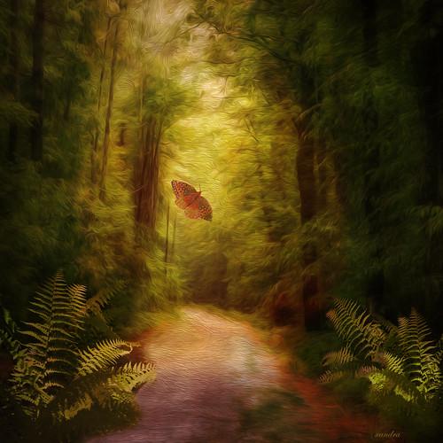 ...follow me to spring...
