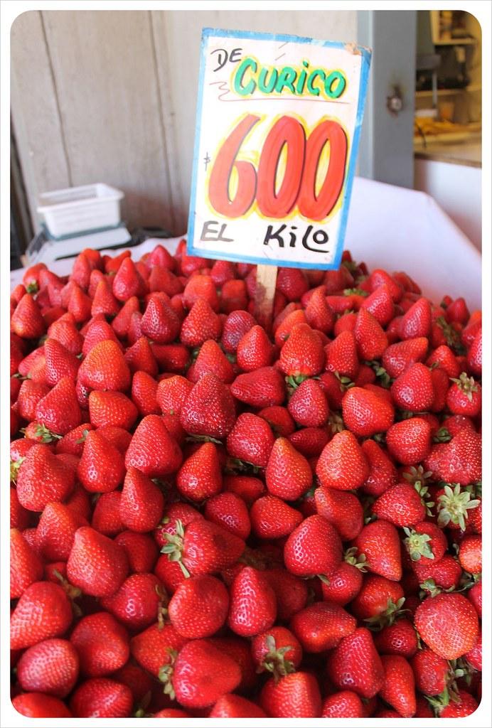 strawberries santiago