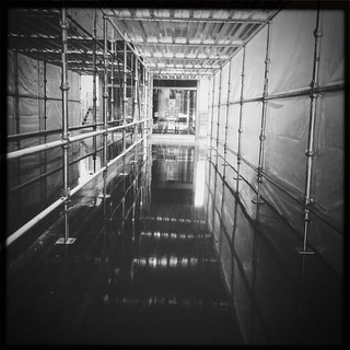 Scaffold Hallway in Doudna 79/365