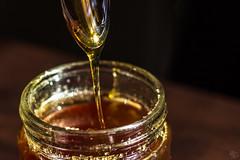 Honey Honey 83/365