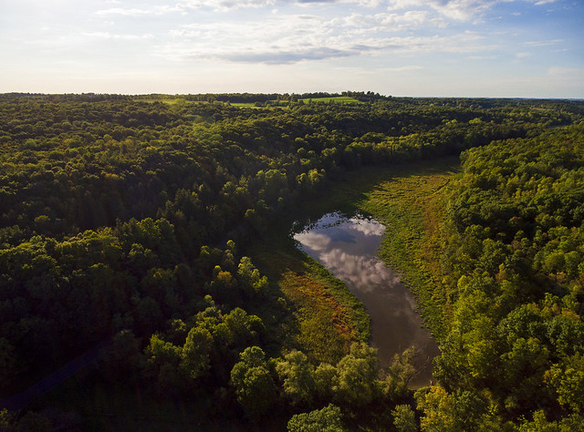 The Skaneateles Conservation Area