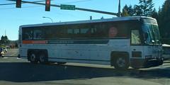 Kitsap Transit Worker/Driver 6010