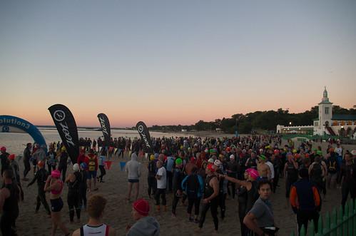 zootwestchestertriathlon sunrise beach rye playland triathlon swim people crowd outdoor dawn