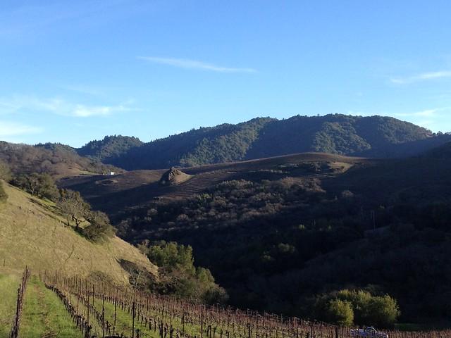 Cain Vineyard and Winery