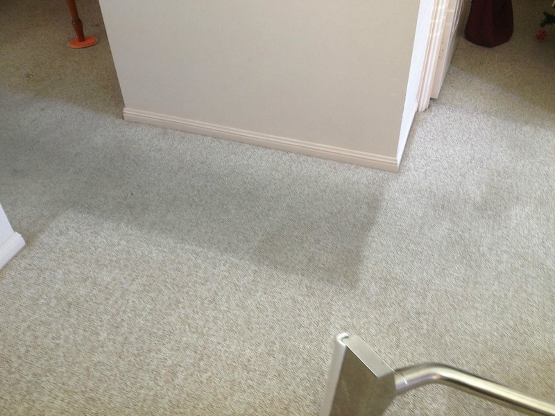 Carpet Steam Cleaning During