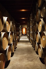 wine(0.0), wine cellar(1.0), wood(1.0), winery(1.0), interior design(1.0),