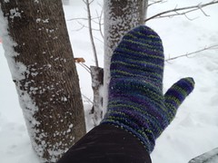 Peacock Mittens