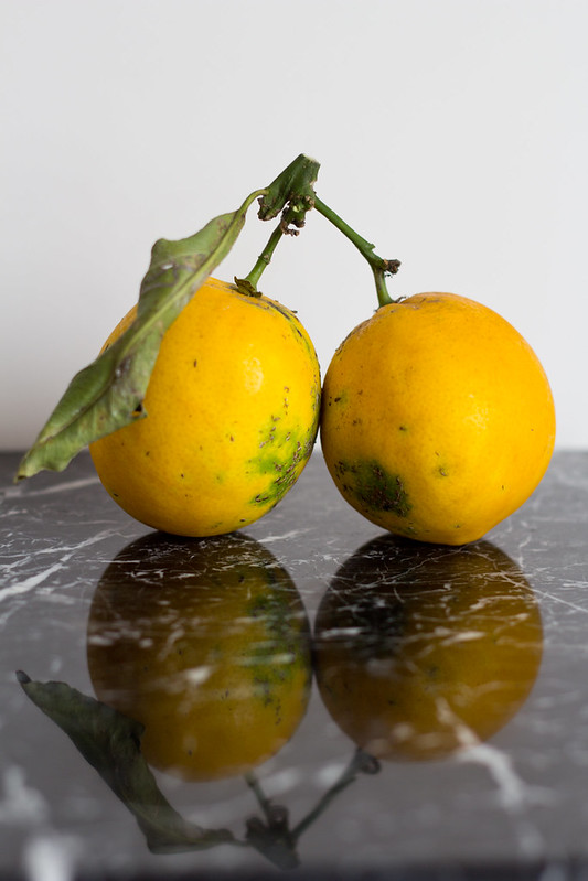Tana Gandhi_food_photography_lemon