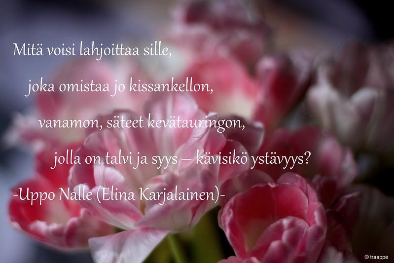 Kaunis Runo 60 Vuotiaalle Naiselle