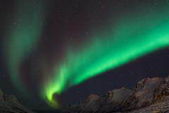 Aurora Arcs