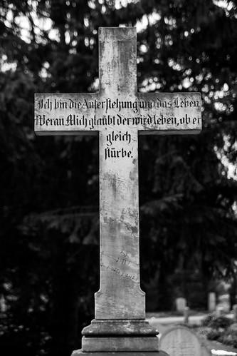 friedhof riensberg bremen