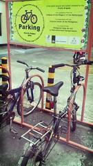 CCP Bike Racks