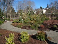 Macadam Winter Garden