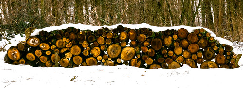 winter sunset snow clouds scenic woodpile ©jrj