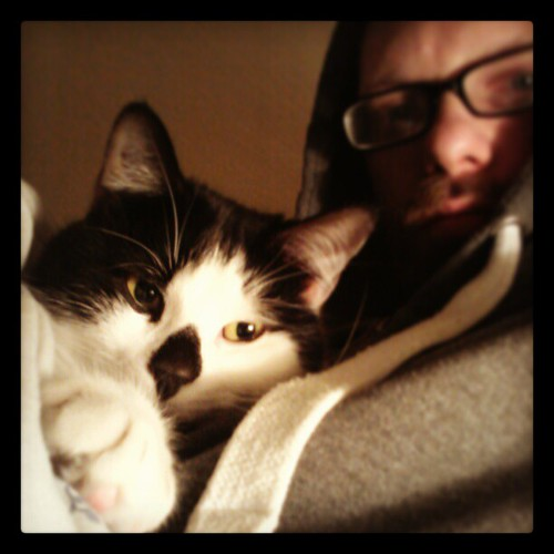 #Snuggles #cats