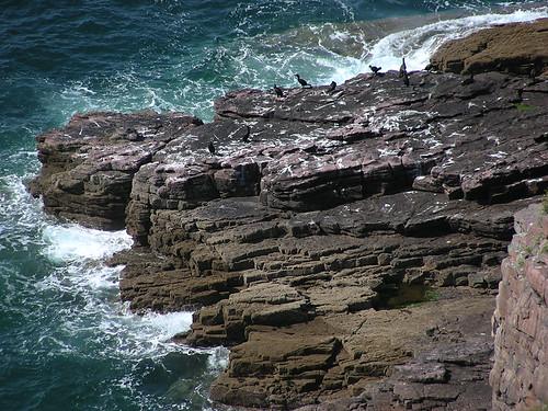 Cap Fréhel – ukřičené útesy Bretaně