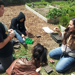 LANLT Gardening Apprenticeship2