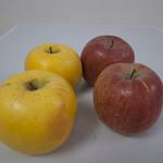 りんごやSUDAりんご