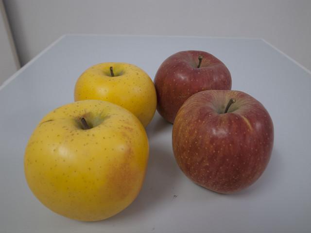 りんごやSUDAりんご_up