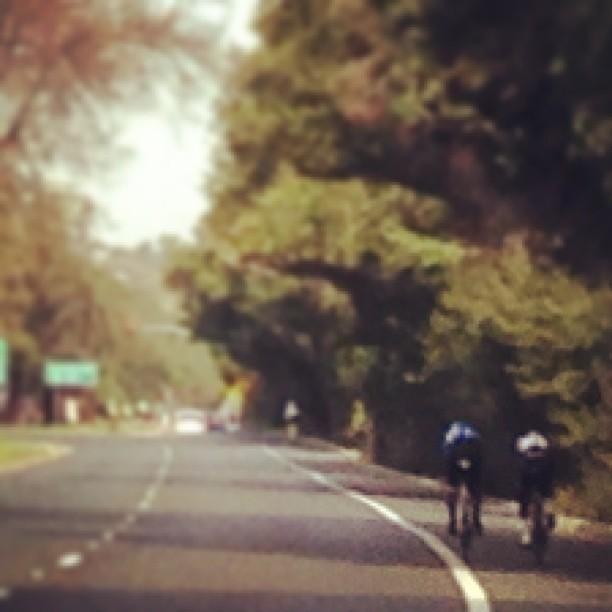 Garmin riders